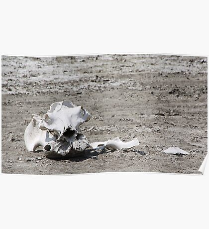 Death in a Dead Lake. The Stark reality of Climate Change, Tanzania Poster