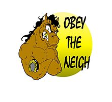 Obey the Neigh Photographic Print