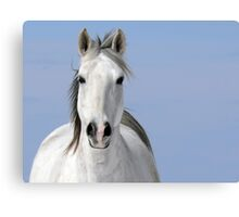 Pale Rider Canvas Print