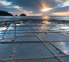 Tessellated Pavement, Tasman National Park, Tasmania by NickMonk