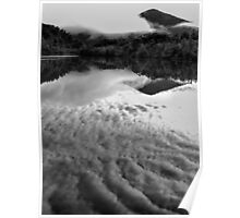 Gordon River Reflections Poster