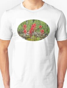 Castilleja, commonly known as Indian paintbrush T-Shirt