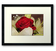 Una rosa per te Framed Print