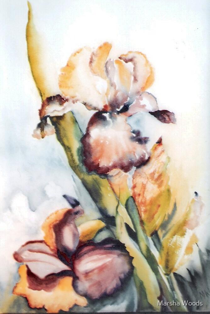 Yellow Iris by Marsha Woods