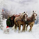 It's Christmas by Shanina Conway