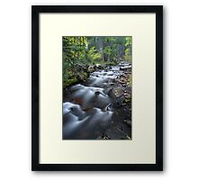 Yosemite Stream Framed Print