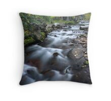 Yosemite Stream Throw Pillow