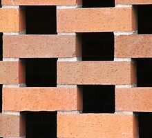 Brick Wall by oscarcwilliams