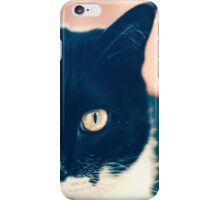 In the Eye of the Cat iPhone Case/Skin