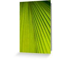Fern Texture 2 Greeting Card