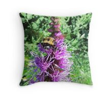 Macro Bumble Bee On Purple Flower Throw Pillow