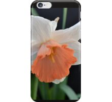 Soft Orange Daffodil iPhone Case/Skin