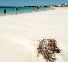 Paradise on Abrolhos Islands by nick page