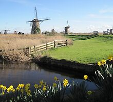 Kinderdijk, Netherlands by Patricia127