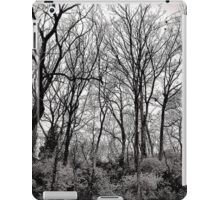 Lonely Trees iPad Case/Skin