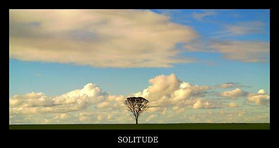 Solitude by Craig Shillington