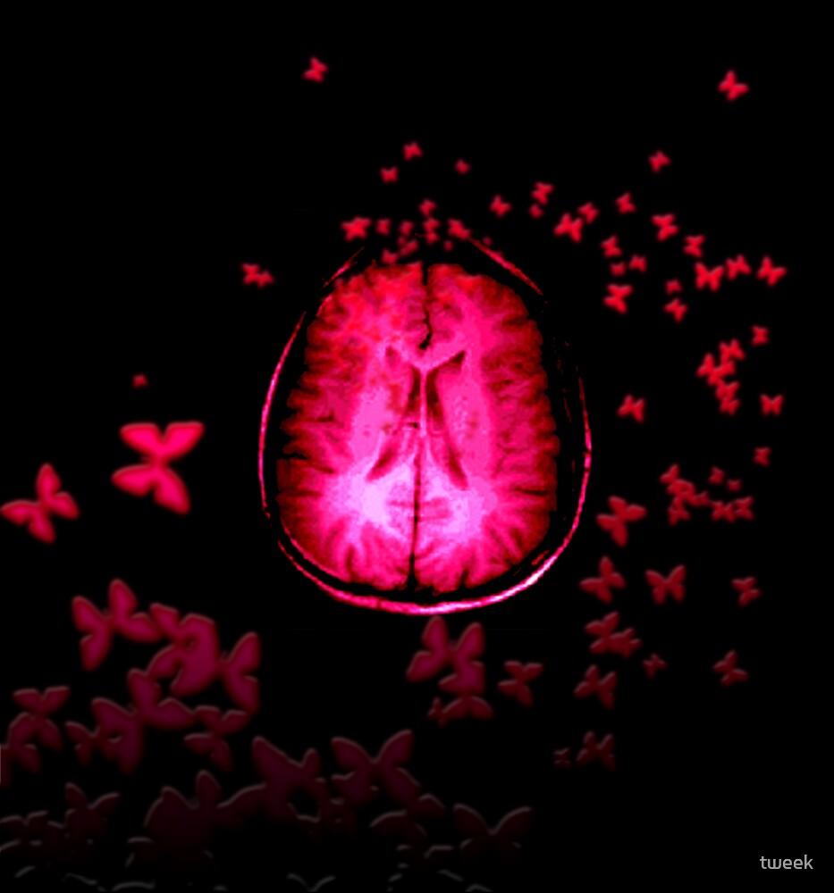 butterfly brain by tweek