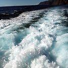 The Atlantic Ocean by Catalin Soare