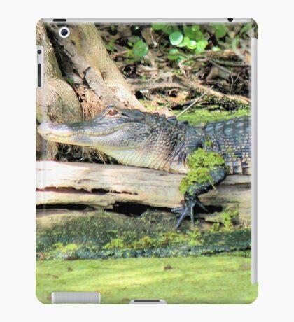 Stretch Gator iPad Case/Skin