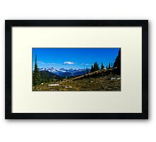 Meadow mountain View  Framed Print