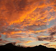 Arizona Sunset by PatGoltz