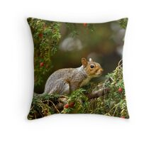 Baby Grey Squirrel Throw Pillow