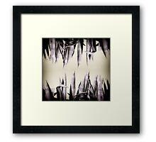 Agave Curtain Framed Print