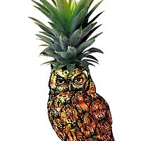 Pineowlpple by Platypusboy