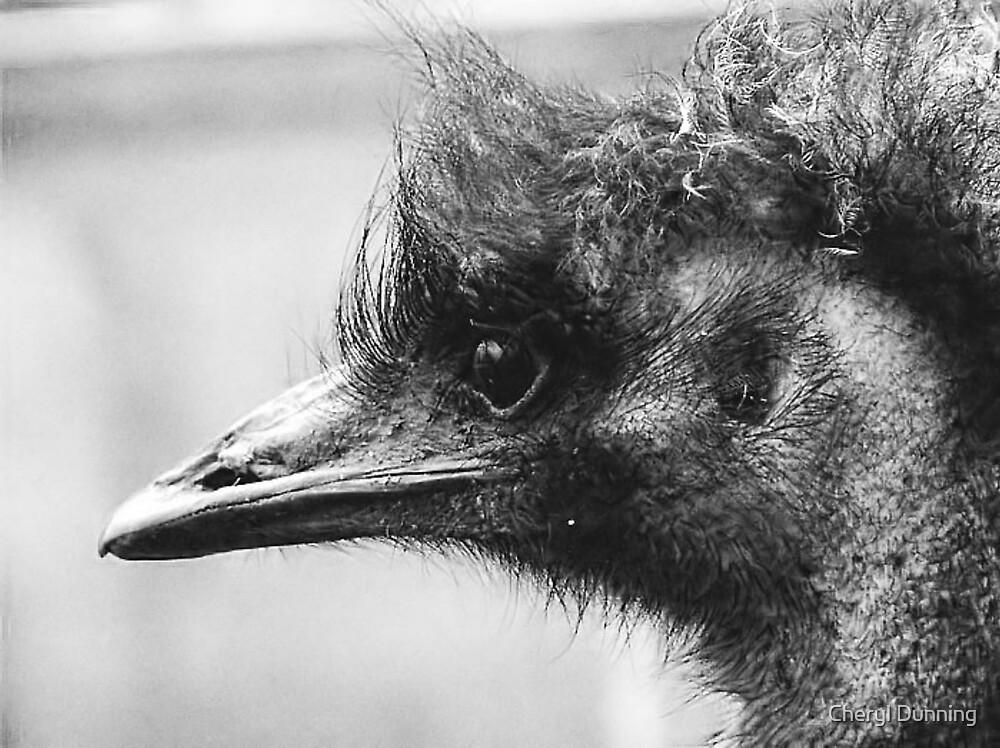 portrait of an emu by Cheryl Dunning