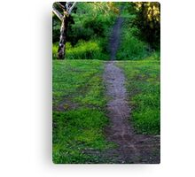 Onward, Ever Upward !!!! Canvas Print