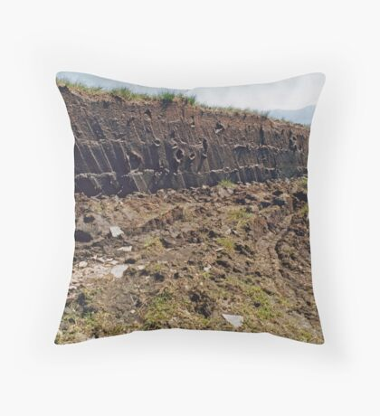 Working Land  Throw Pillow