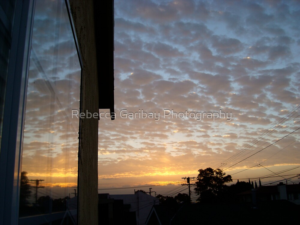 Just outside my window by Rebecca Garibay Photography