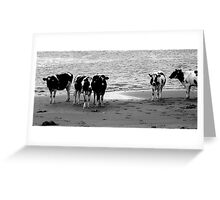Dutch landscapes 5 Greeting Card