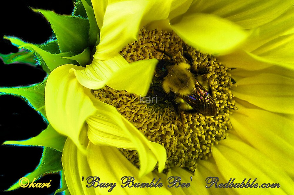 Busy Bumble Bee by kari