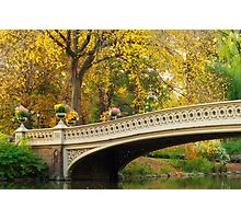 Bow Bridge After Sunrise Photographic Print