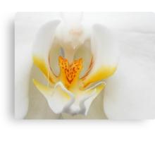 Orchids Smile Canvas Print