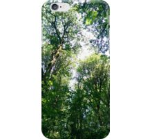 Canopy 3 iPhone Case/Skin