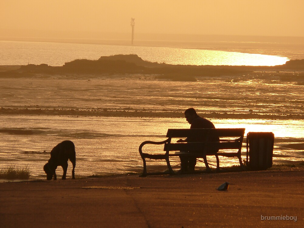 Morning contemplation by brummieboy