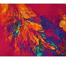 Abstract photography, Microscopy Photographic Print