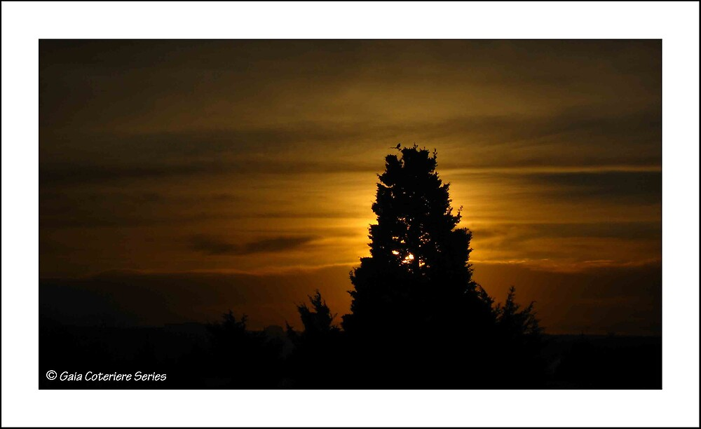 morning steeple  by JetsetAphrodite