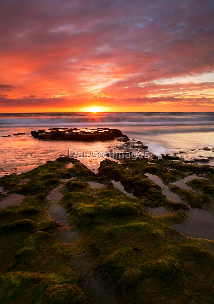 California Sunset by DawsonImages