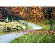 Country Autumn Photographic Print