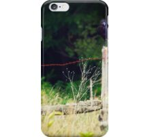 Rusty Barbed Wire Fence iPhone Case/Skin