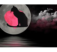 Cat In the Moon Photographic Print