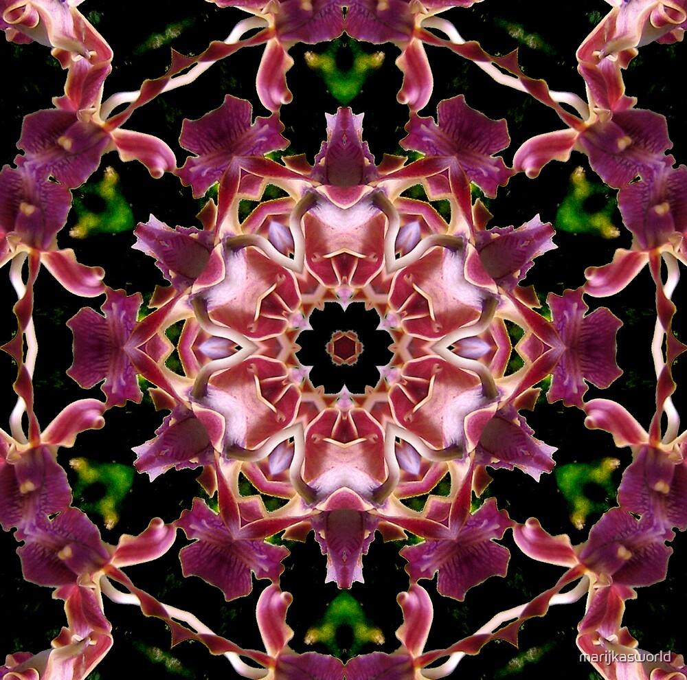 Orchid rondo by marijkasworld