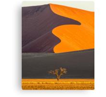 Namib-Naukluft National Park of Namibia Canvas Print