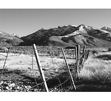 Scout's Fence IV Photographic Print