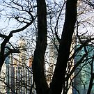from brooklyn heights with love by Michele Roohani