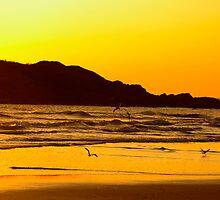 Sunrise activity by Malin Nordlund