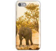 Elephants of Etosha National Park iPhone Case/Skin
